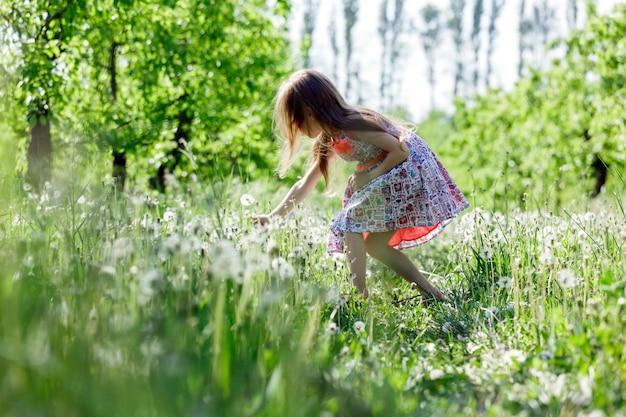 Het meisje geniet van het gebied van de paardebloem of de groene weide in de lente zonnige dag.