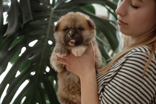Het meisje houdt een kleine pluizige pasgeboren puppy in haar armen.