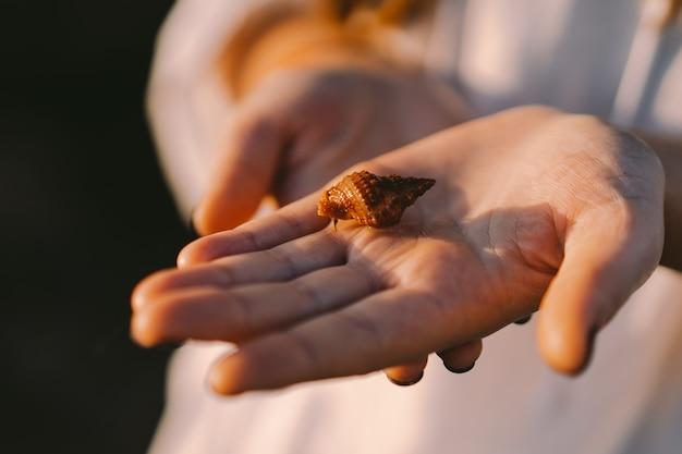 Het meisje houdt een zeebewoner in een schelp op haar hand
