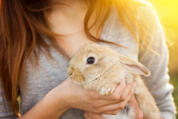 Het meisje met het konijn. gelukkig meisje houdt van schattige pluizige bunny. vriendschap met easter bunny