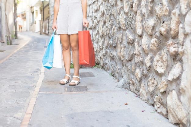 Het moderne vrouw stellen met het winkelen zakken