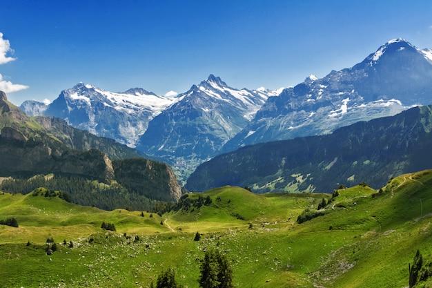 Het mooie idyllische landschap van alpen met bergen in de zomer, zwitserland