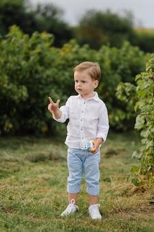 Het mooie jongen spelen met bellen op zonnige dag in de tuin.