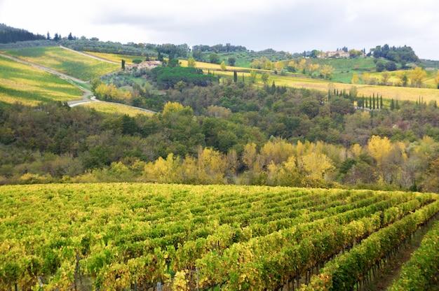 Het mooie landschap van toscanië van wijngaard en heuvels in de herfst, chianti, italië