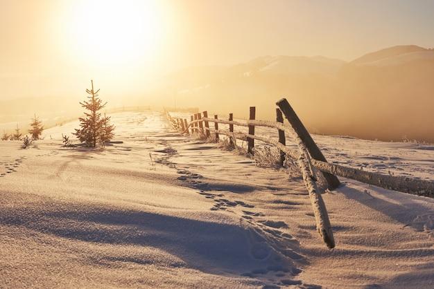 Het mysterieuze winterlandschap bestaat in de winter uit majestueuze bergen. fantastische zonsondergang. foto beleefdheid briefkaart. karpaten. oekraïne