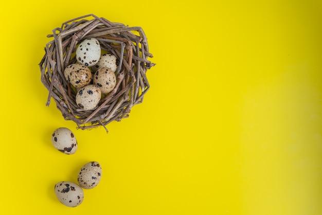 Het nest van kwartels met eieren op de gele achtergrond. plat lag met kopie ruimte voor ansichtkaarten en design