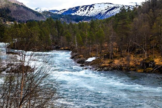 Het noorse landschap: rivier, bos en bergen