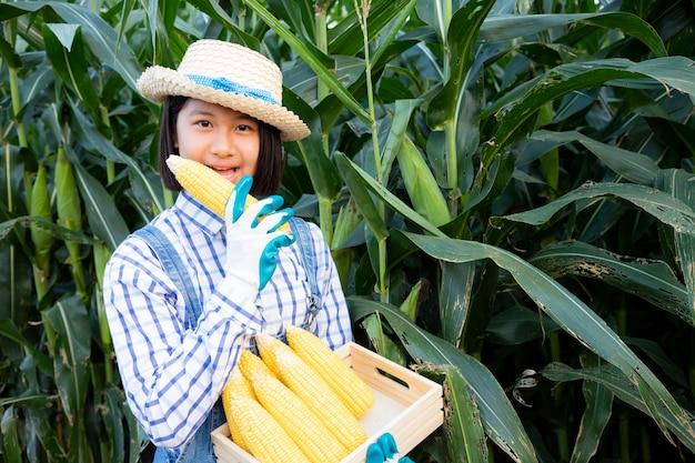 Het ontspannen van het meisje en ziet het volgen van het product op graangebied. maïsproducten worden gebruikt om voedsel voor mens en dier te produceren. landbouw concept.