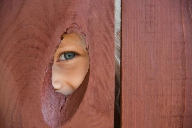 Het oog van het meisje kijkt door een gat in het hek.