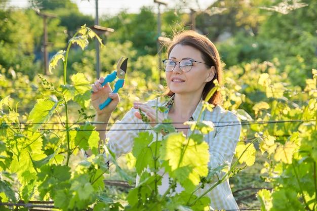 Het openluchtportret van de lente van het rijpe vrouw werken in wijngaard
