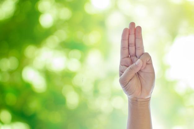 Het opheffen van handen op groene natuurlijke bokeh wazige abstracte achtergrond