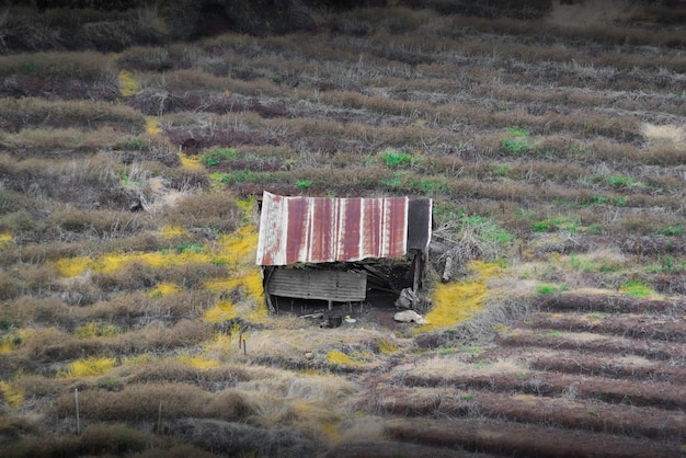 Het oude huis op de boerderij