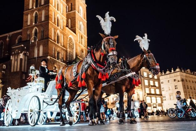 Het oude plein van de nacht krakau met lichtgevende paardenkoetsen