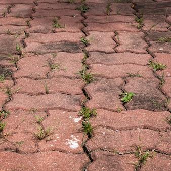 Het oude rode voetpad van de zandbaksteen
