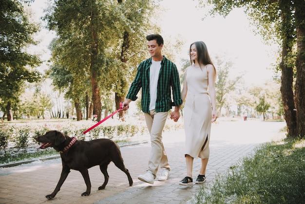 Het paar loopt met hun hond in de zomerpark