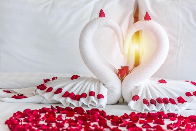 Het paar van de zwaan zet op wittebroodswekenbed in hartvorm met roze bloemblaadjes