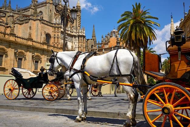 Het paardvervoer van sevilla in kathedraal van sevilla