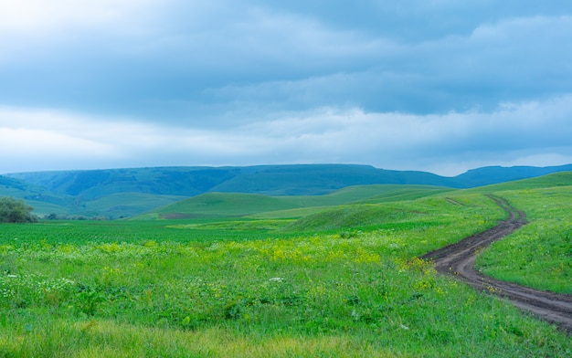 Het pad in de bergen gaat verder dan de horizon
