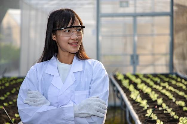 Het portret van aziatische mooie biotechnoloog controleert en past groene eikengroente in organische boerderij aan voor onderzoekssoorten.