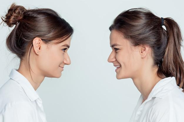 Het profielportret van de studio van jonge vrouwelijke tweelingenzusters op grijs