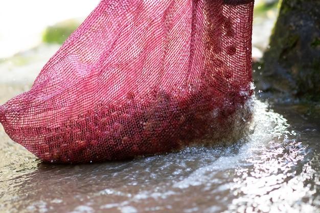 Het rode organische wassen van de koffiekers in koffieverwerking