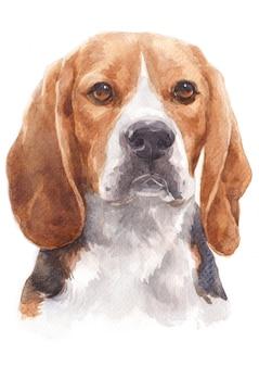 Het schilderen van de waterverf van een ongehoorzame hond genoemd beagle