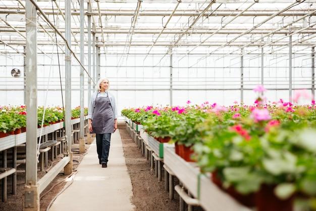 Het schot van gemiddelde lengte van vrouwenarbeider die zich in serre bevindt