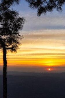Het silhouet van de pijnboomboom op een heuvel en een kleurrijke zonsondergang met wazige wolken in de hemel in avond.