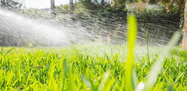 Het sproeiers bespuitende water van het gazonwater over gazon groen vers gras in tuin