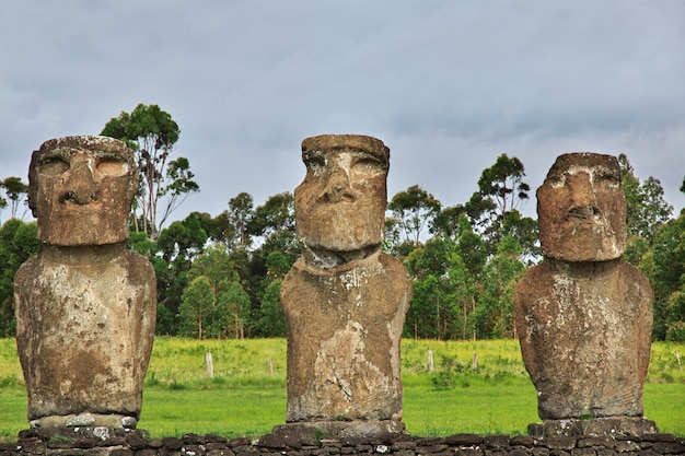 Het standbeeld moai in ahu akivi op paaseiland, chili