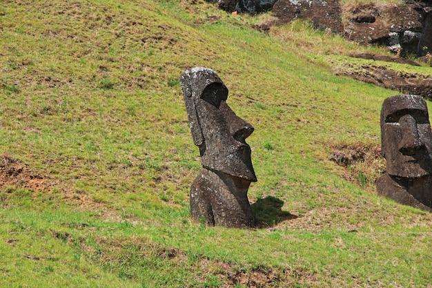 Het standbeeld moai in rano raraku op paaseiland, chili