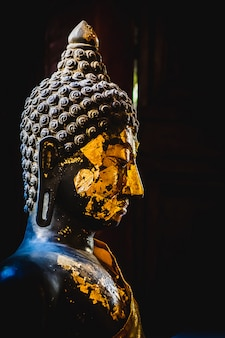 Het standbeeld van close-up donkere boedha in zijaanzicht met zwarte achtergrond