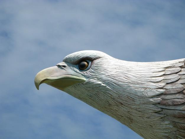 Het standbeeld van de adelaar in eiland langkavi, maleisië