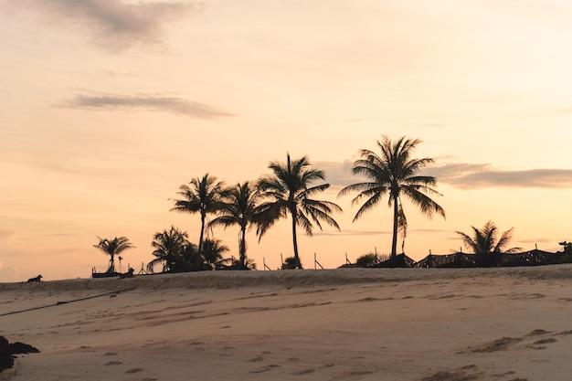 Het strand 's ochtends op koh lipe en' s ochtends de longtailboot