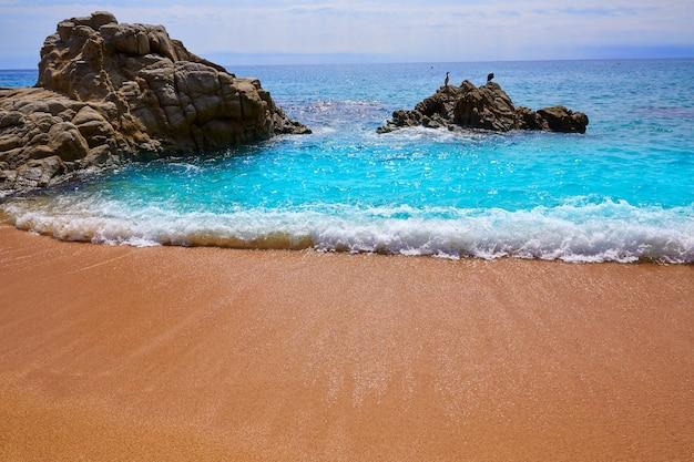Het strand van cala sa boadella platja in lloret de mar