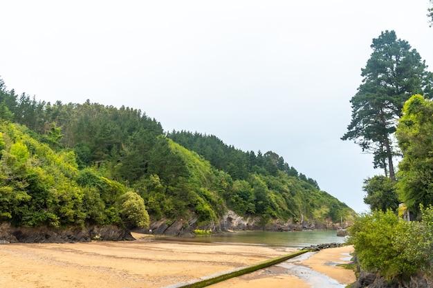 Het strand van de gemeente ea in de buurt van lekeitio, golf van biskaje in de cantabrische zee. baskenland