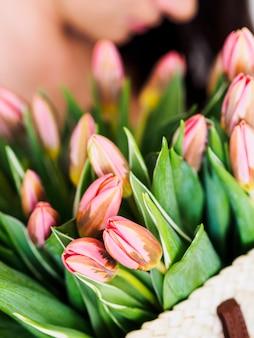 Het strozak van de vrouwenholding met bos van verse roze tulpen