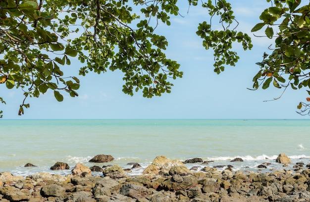 Het tropische zeegezicht van de rotskust