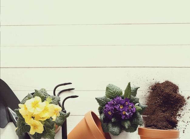 Het tuinieren hulpmiddelen en bloempot op houten achtergrond