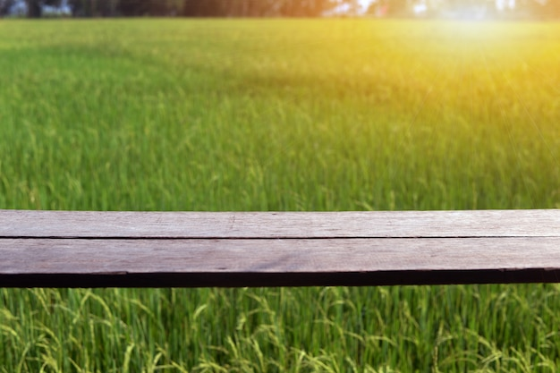 Het uitzicht op de rijstvelden met prachtige rijstvelden en de warmte van de zon.
