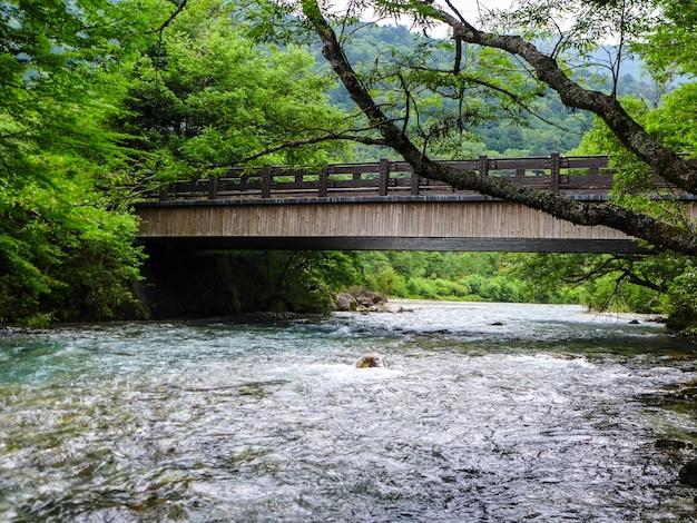 Het uitzicht op de stroom stroomt naar beneden door het bos op de berg in kamikochi japan