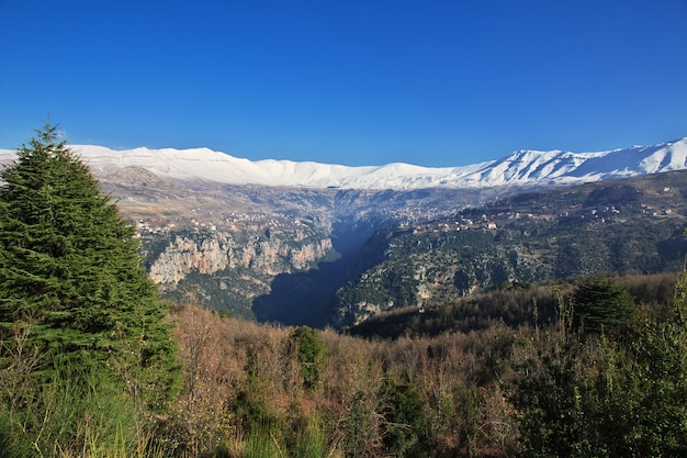 Het uitzicht op kadisha valley, libanon
