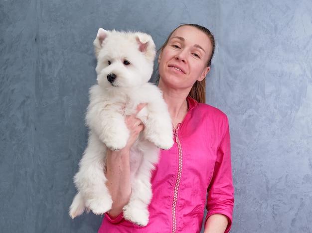 Het verzorgen van een west highland white terrier-hond in een schoonheidssalon in de handen van een trimmer.