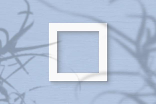 Het vierkante frame vel wit geweven papier op grijze muur achtergrond. mockup-overlay met de plantschaduwen. natuurlijk licht werpt schaduwen van de aloë. plat lag, bovenaanzicht. horizontale oriëntatie