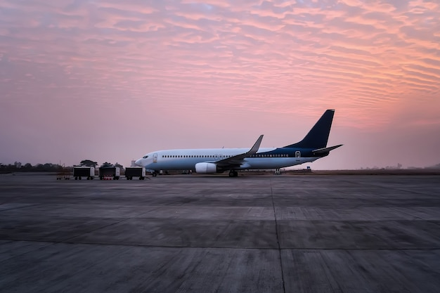 Het vliegtuig staat met de tunnel op de luchthaven. het vliegtuig wordt klaargemaakt voor vertrek van het vliegveld. bagagekarren op de baan van de luchthaven.