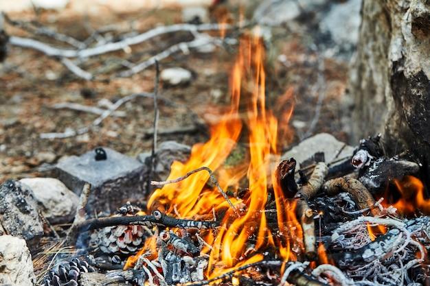 Het vreugdevuur wordt gefokt in een sparrenbos van takken en kegels. stenen zijn omzoomd