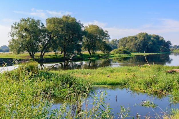 Het wateroppervlak van de rivier met groene graseilanden tegen blauwe hemel. rivierlandschap in zonnige zomerochtend