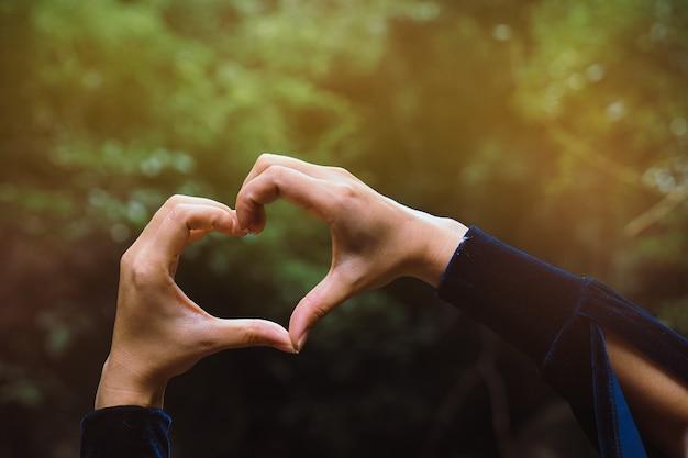 Het wijfje dient de vorm van hart tegen de groene bomen in. handen in vorm van liefdehart.
