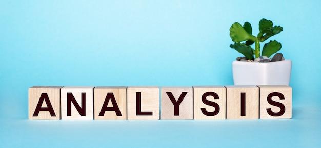 Het woord analyse is geschreven op houten kubussen bij een bloem in een pot op een lichtblauwe achtergrond