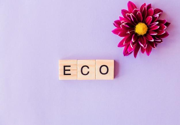 Het woord eco samengesteld uit houten blokken op een paarse achtergrond en een bloemknop